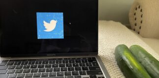 Two cucumbers next to a laptop with the Twitter logo on the screen