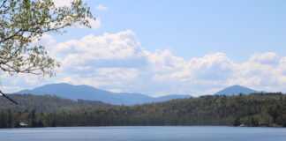 Forest Lake with mountains in the background