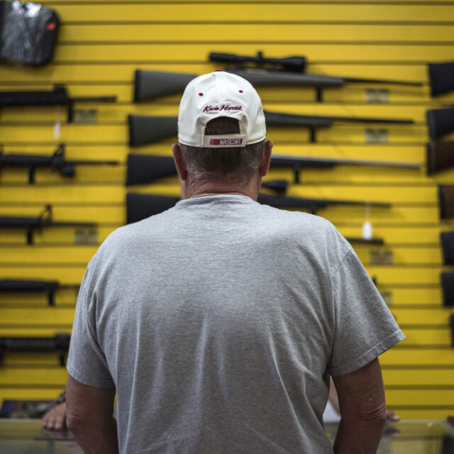State system for background checks divides gun advocates
