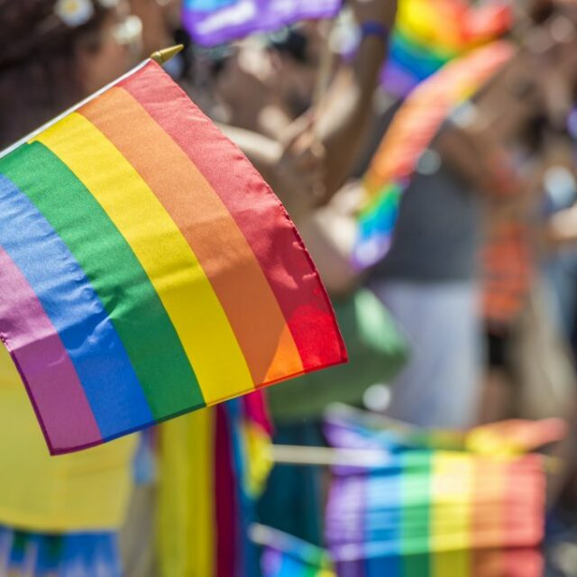 Commentary: With 'divisive concepts' language, Pride Month is under attack