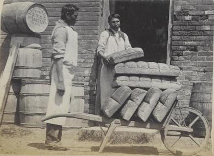 Indigenous students load loaves of bread into a wheelbarrow outside of a bakery in 1880