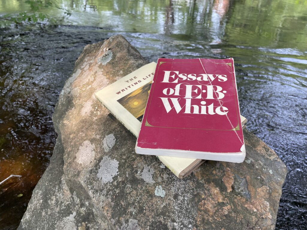 Two books, The Writing Life and Essays of E.B. White rest on a rock on the edge of a river