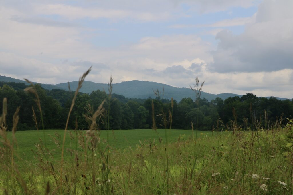 A green open field in Lyme, with mountains in the background.