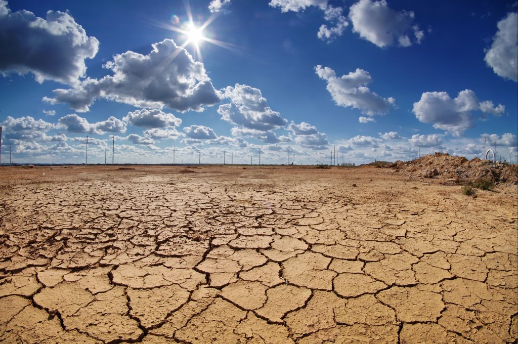 Parched land in the desert
